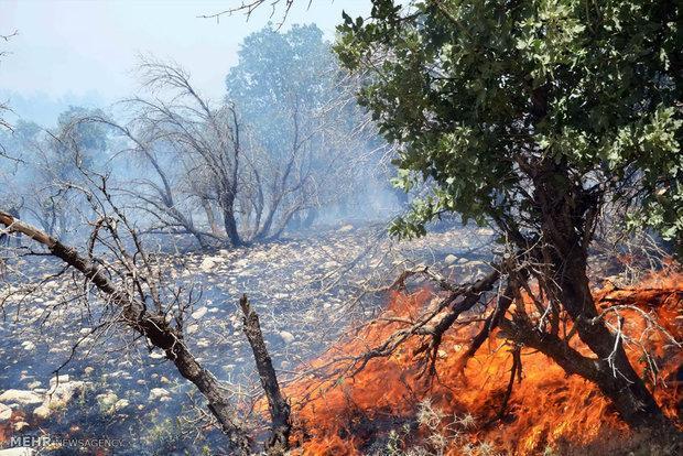 آتش سوزی جنگل های اندیمشک در مناطق سخت گذر کوهستانی بود