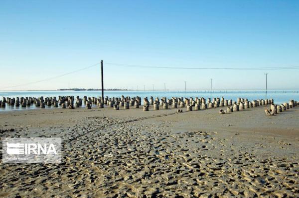 خبرنگاران خلیج گرگان برای جلوگیری از آسیب زیست محیطی باید احیا گردد